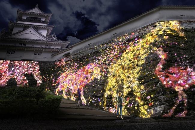 高知城の石垣に住まう花と共に生きる動物達